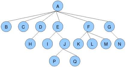 数据结构图形结构结点