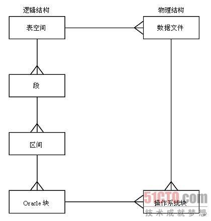 6.2 逻辑数据库结构